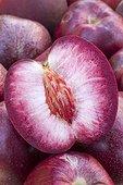 Nectavignes. Cross between vineyard peach and nectarine