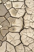 Cracked clay due to drought in a field.