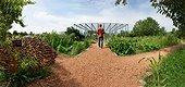 Promeneur dans les allées du Jardin de la Maourine, Jardin appartenant au muséum d'histoire naturelle de Toulouse, France