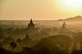 La pleine de Bagan est peuplé de plusiuers centaines de temples et stupas. Ce site est l'un des plus beau site archéologique du monde