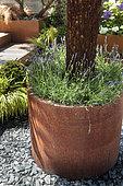 'Jardins Jardin' Session of june 2015, Création Designs and Garden: 'Comme si c'était chez vous'
