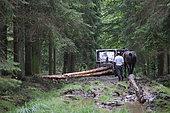 collaboration en exploitation résineuse: débusquage au cheval et débardage au tracteur Ardenne