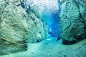 Scuba diver inside the volcanic crack Nesgjá, in the Ásbyrgi National Park, northern Iceland