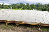Solar dryer, Drying and bagging center, CECAB, Organic Cocoa Production and Export Cooperative, Fair Trade, Guadalupel, Sao Tome and Principe Island