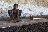 Boy holding cocoa beans in a dryer, Bela Vista Village, Sao Tome and Principe Island