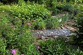 Private garden, Fortune meadowsweet (Spiraea japonica) 'Shirobana', Pineapple Lily (Eucomis autumnalis), slate path, Little Bluestem (Schizachyrium scoparium) 'Blue haven'