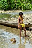 Sunda pangolin (Manis javanica) in water and boy, Siberut, Mentawai, Indonesia