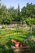 Vegetable garden in spring, Provence, France