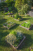 Square foot kitchen garden in june, Provence, France