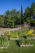 White mustard, Square foot kitchen garden, Tomato on stakes, Dahlias cactus, Provence, France