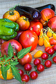 Tomatoes, eggplants and peppers, Provence, France