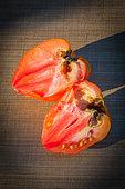 Tomato 'Coeur de Boeuf' rotting, Provence France
