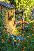 Garden shack with seating area in july, Provence, France