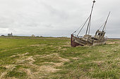 Abandoned shipwreck in the fields, Iceland
