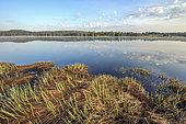 Lake and peat bog Bellefontaine, Jura, France