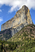 Mont Aiguille, in the Vercors, altitude: 2,087 meters, control hill spared by the erosion of limestone and marl secondary, Prealps, France