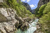 Landscape of the bottom of the Verdon Gorge, along the path of the Imbut, the wildest area of the canyon, The Verdon Gorge, Prealps, France