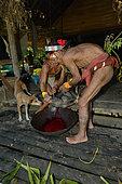 A pig is bled. Mentawai. Siberut, Indonesia