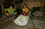 """Woman Mentawai putting the semolina of sago in bamboo for the cooking. The mature woman to the right is traditionally dressed. The young woman to the left is dressed """"modern"""". Siberut, Indonesia"""