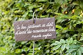 Proverb in a garden, summer, Alsace, France