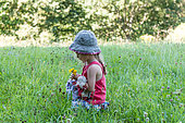 Young girl picking up wild flowers in a meadow, summer, Moselle, France