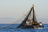 Commercial tuna fishing boat pulling in its net off the coast of Baja Mexico