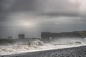 Dyrholaey, Reynisfjara (black sand beach) and volcanic arch, Iceland
