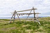 Fish Dryer, Flatey Island, Iceland