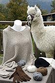 Produits en laine d'alpaga, gants, bonnet .... élevage de lamas et d'alpagas la Montagne des Lamas, La Bresse, Vosges, France