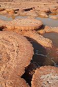 Acid ponds in Dallol, Ethiopia