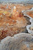 Concretions coloured by sulphur, potassium and iron, Dallol volcano, Danakil depression, Ethiopia