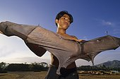 Young man with Giant Golden-crowned Flying Fox (Acerodon jubatus), Luzon
