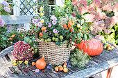 Autumnal display on table