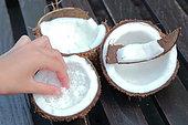 Grated coconut flesh, Moorea Island, French Polynesia