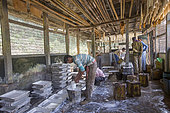 Manufacturing rubber sheets from the latex from rubber trees, Tripura state, India