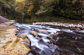 """The Cheran. The Cheran is a long river labeled """"Wild River"""" by the Wild Rivers Label, France, Haute-Savoie (74), Natural Regional Park of the Bauges Massif, Hery-sur-Aby, Alps, France"""