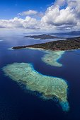 Coral reef in the lagoon, Mayotte, Indian Ocean