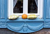 Pâtissons et potiron posés sur un rebord de fenêtre, Allemagne