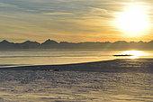 Dog team, the Scoresbysund in the background, Greenland