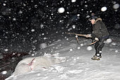 Polar bear hunter right after he killed a bear. Igterajivit district in February. Eastern Greenland during the polar night