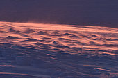 Windblown snow at sunrise. Igterajivit district in February, eastern Greenland