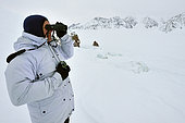 Recherche d'ours polaires sur la banquise. Dans le Lillefjord , Groenland de l'est , février 2016