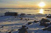 Camp de chasse à Unarteq. Groenland , février 2016