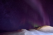 Colline derrière Ittoqqortoormiit sous des aurores boréales. Groenland , février 2016