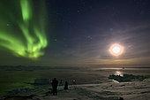 Photographie et film d'aurores boréales. Au fond le Scoresbysund , Groenland février 2016