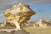 Mushroom-shaped limestone rock formation, White Desert, Farafra Oasis, Libyan Desert, also known as Western Desert, Sahara, Egypt, Africa