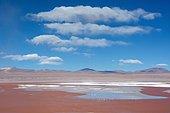 Laguna Colorada with red water due to high content of algae in Uyuni, Lipez, Bolivia, South America