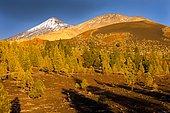 Teide volcano in the Teide National Park, UNESCO World Heritage Site, Tenerife, Canary Islands, Spain, Europe