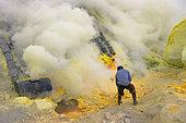 Indonesia, Java Island, East Java province, Kawah Ijen volcano, Miner and solid sulfur