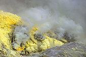 Indonesia, Java Island, East Java province, Kawah Ijen volcano, Sulfur Miners